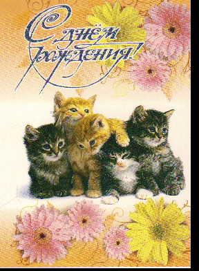 Открытка 3-1910 С днем рождения! сред конгр блест котата герберы