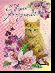 Открытка З-1918 С днем рождения! сред конгр блест рыжий кот орхидеи