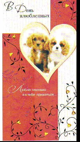 Открытка 0823.057 В День влюбленных (евро+, фольга, блестки, щенки в сердце