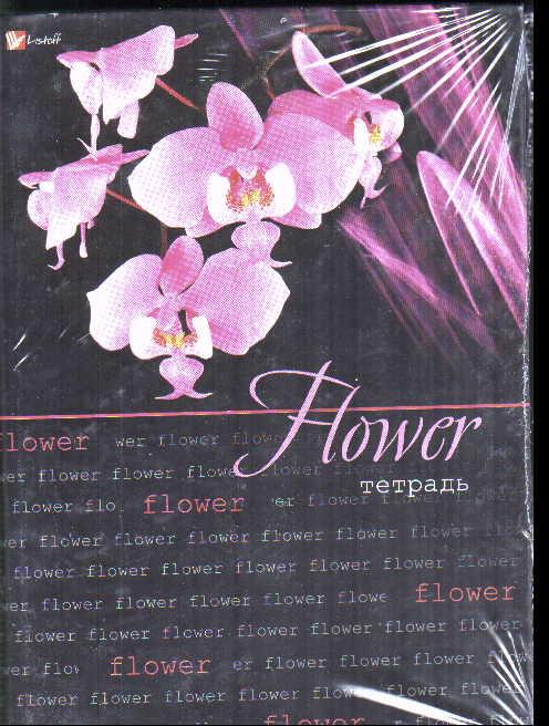 Тетрадь на кольцах Прекрасные орхидеи. Ярко-розовые
