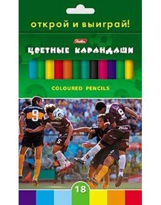 Карандаши цветные 18 цв Hatber Футбол