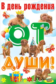 Открытка 053.516 В день рождения! сред глитер конгр собаки