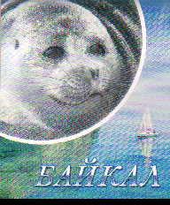 Сувенир Блокнот Байкал 9х11 картон ассортимент