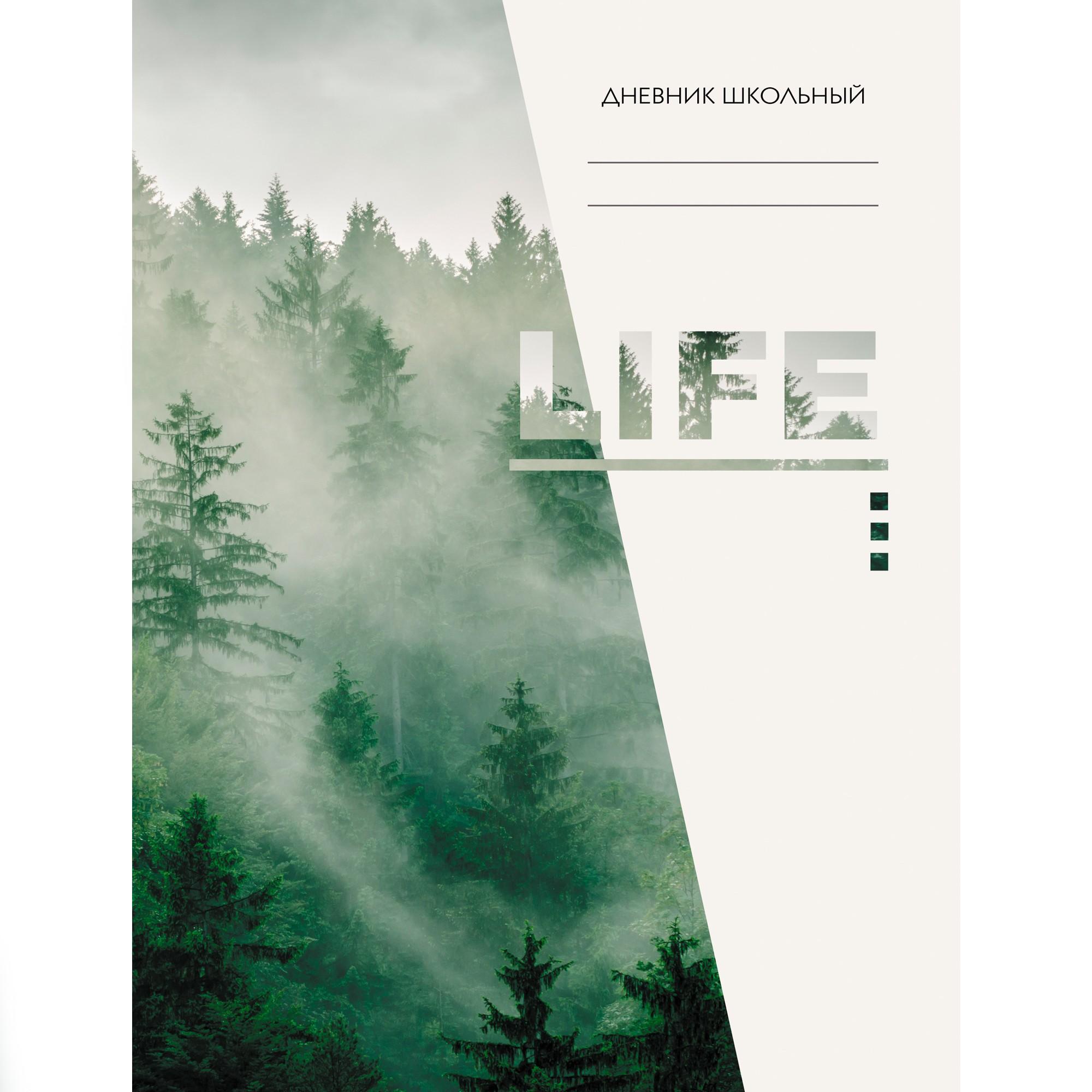 Дневник ст кл Life