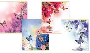 Папка для тетрадей А5 на молнии 1отд Silwerhof Бабочки и цветы