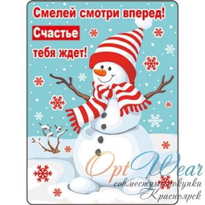 НГ Магнит 51.12.214 Смелей смотри вперед!.. винил 7*9 снеговик