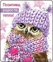 НГ Магнит 51.12.201 Позитива, радости, тепла! винил 7*5 сова в шапке и шарф