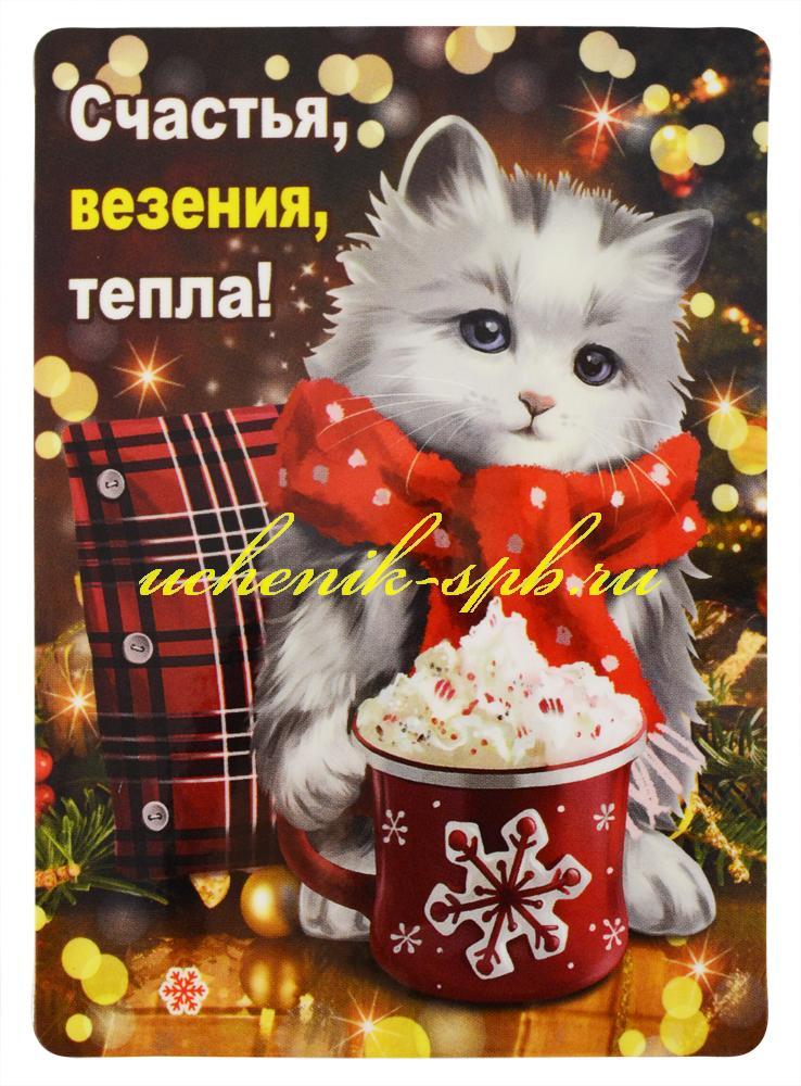 НГ Магнит 51.12.217 Счастья, везения, тепла! винил 7*9 котик