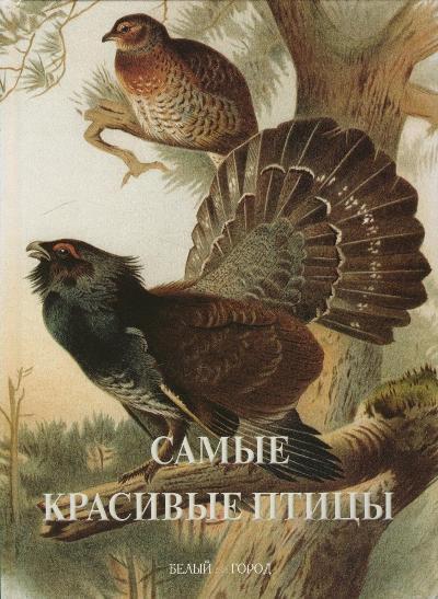 Самые красивые птицы: иллюстрированная энциклопедия
