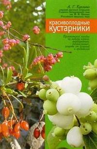 Красивоплодные кустарники (барбарис, магония, снежноягодник, бересклет)