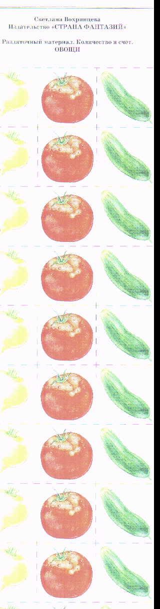 Раздаточный материал Количество и счет. Овощи