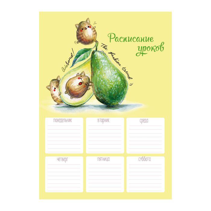 Расписание уроков А4 Авокадо-Котики