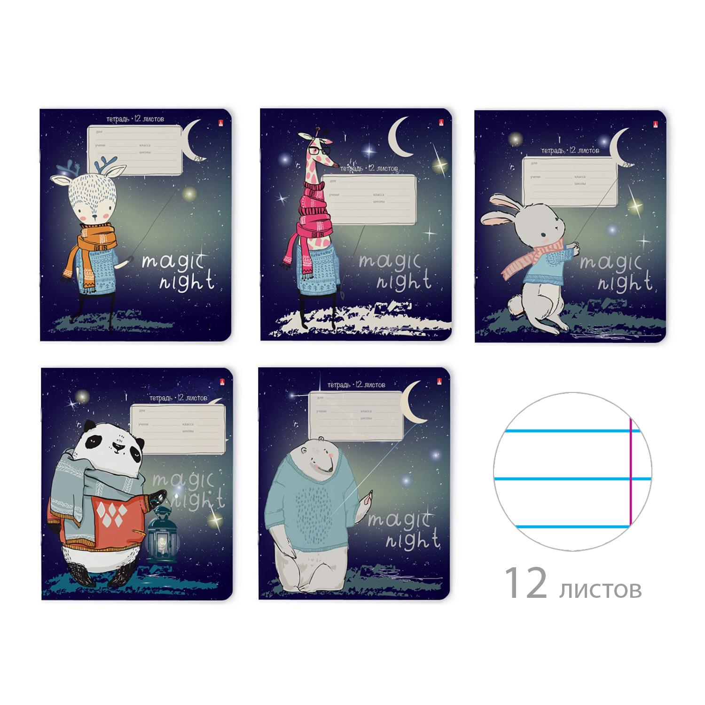 Тетрадь 12л линейка Magic night