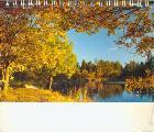 Календарь настольный 2016 (домик) 063.198 Березки цветы