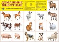 Плакат Домашние животные: Познавательно-речевое развитие А2