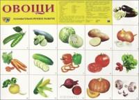 Плакат Овощи: Познавательно-речевое развитие А2