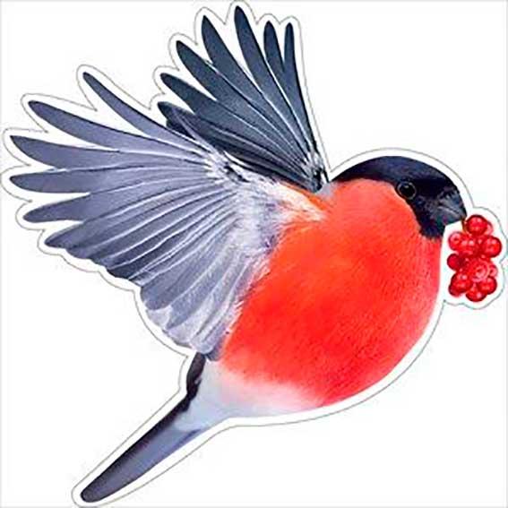 Украшение на двустор. скотче 88.453 Новогоднее! снегирь с ягодами
