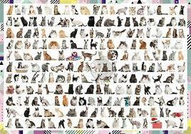 Пазл 1000 Trefl 10498 208 кошек