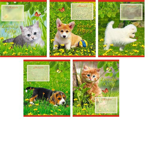 Тетрадь 12л клетка На прогулке (котята и щенки)