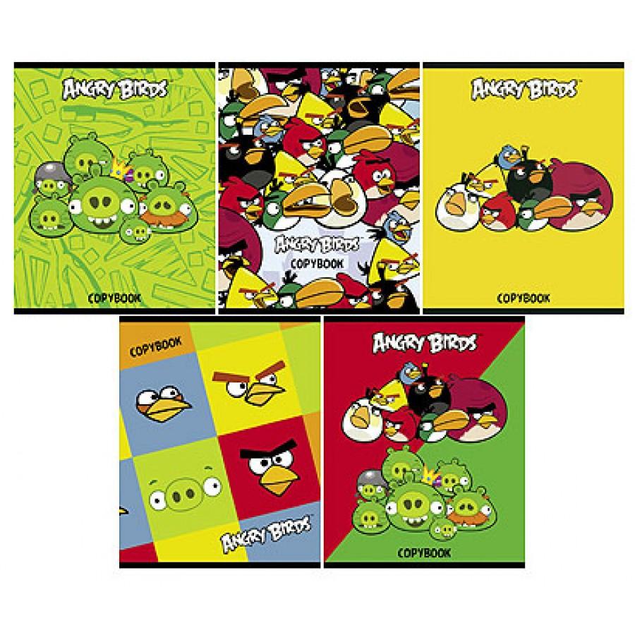 Тетрадь 48л кл Angry Birds