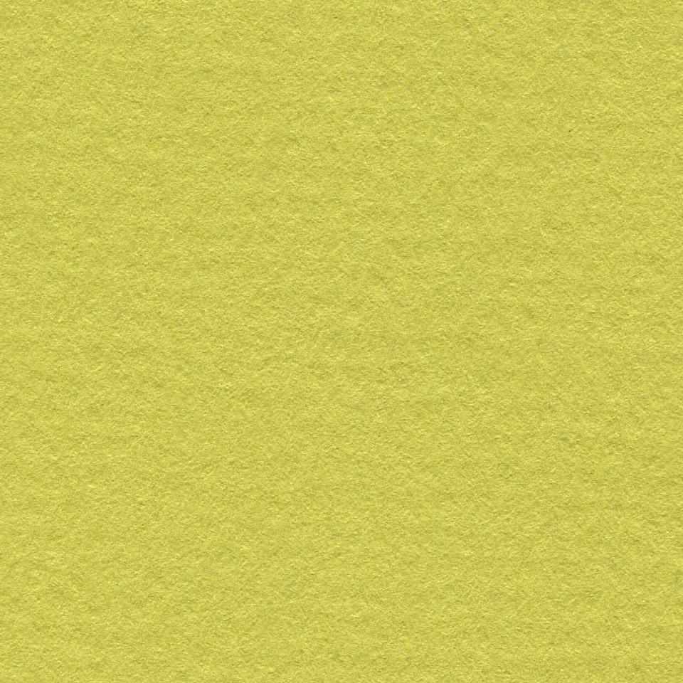 Бумага для пастели 50*65 фисташковый