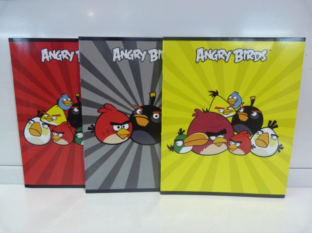 Тетрадь 24л клетка Angry Birds