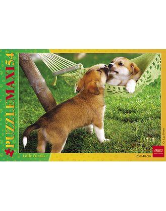 Пазл Maxi 54 Два щенка