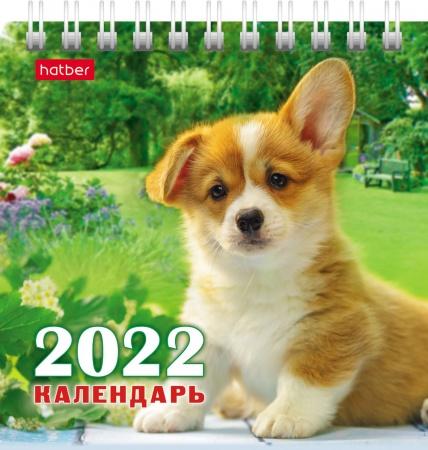 Календарь настольный 2022 (домик) 12КД6гр_24222 Четыре с хвостиком