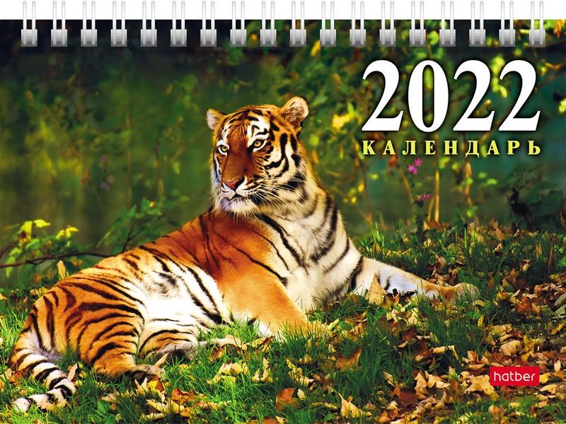 Календарь настольный 2022 (домик) 12КД6гр_24918 Год Тигра