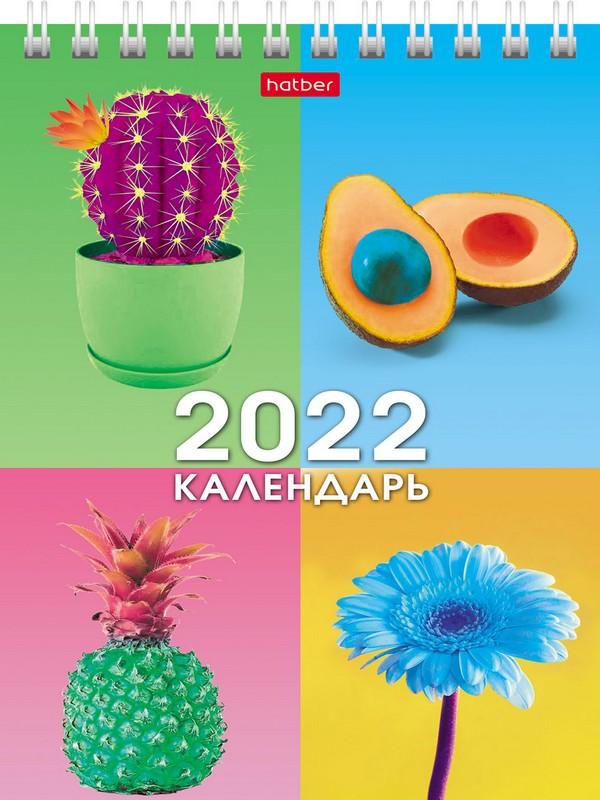 Календарь настольный 2022 (домик) 12КД6гр_24953 Краски радости