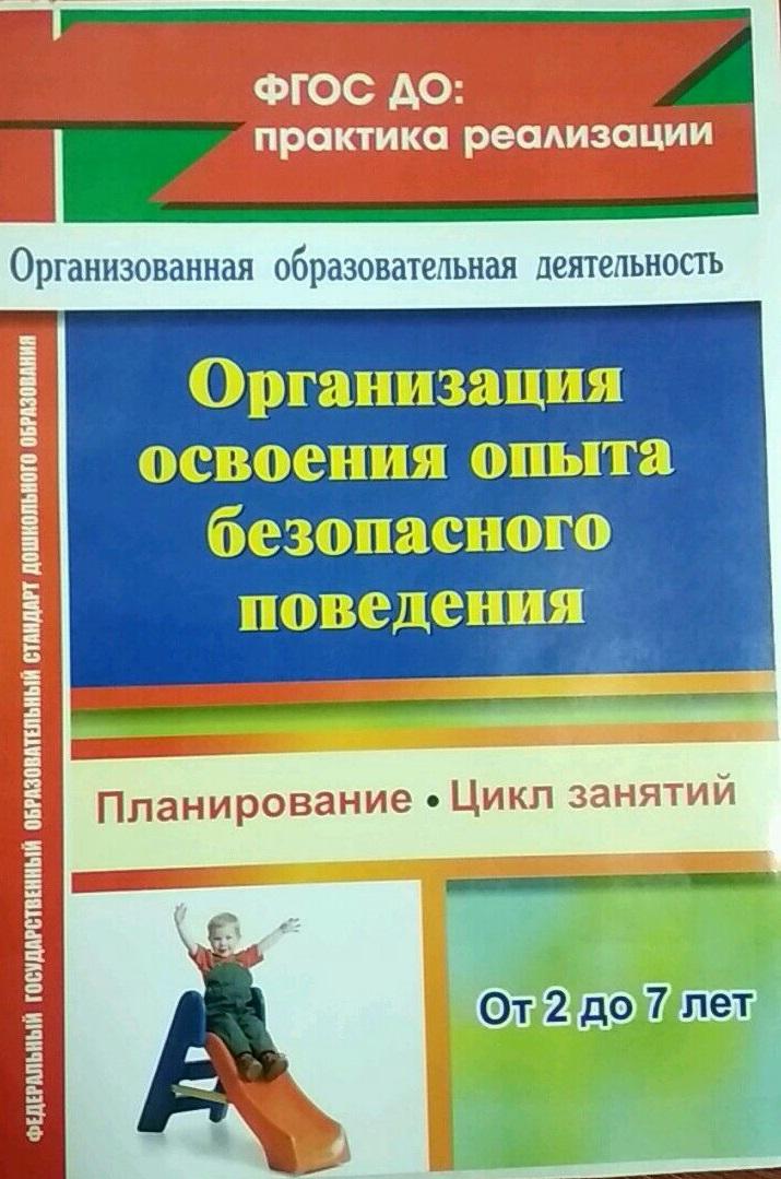 Организация освоения опыта безопасного поведения с детьми 2-7 лет: планирование, цикл занятий