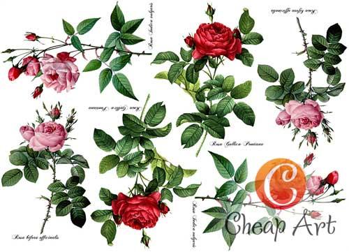 Декупажная карта А4 Розы