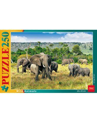 Пазл 250 Слоны в саванне
