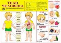 Плакат Тело человека. Познавательное и речевое развитие. А2