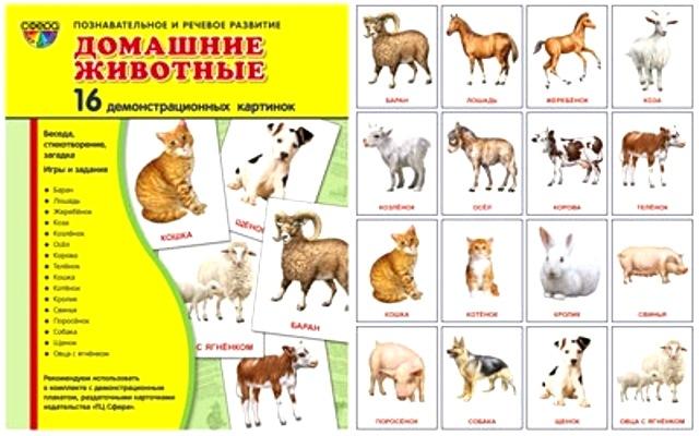 Домашние животные: 16 демонстрационных картинок с текстом на обороте
