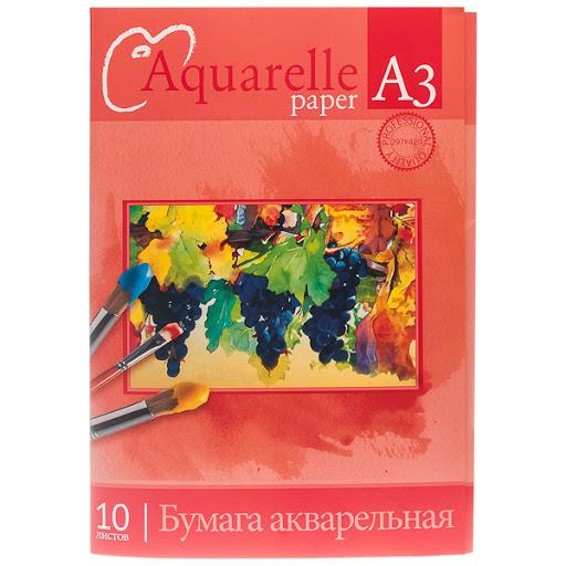Папка для акварели А3 10л 180гр Виноградные грозди