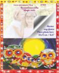 Творч Алмазная мозаика 17*21 фоторамка Волшебные совы