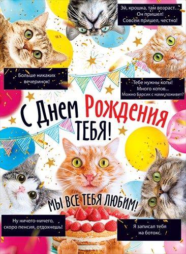 Плакат 84.439 С днем рождения тебя! А2 вертик коты