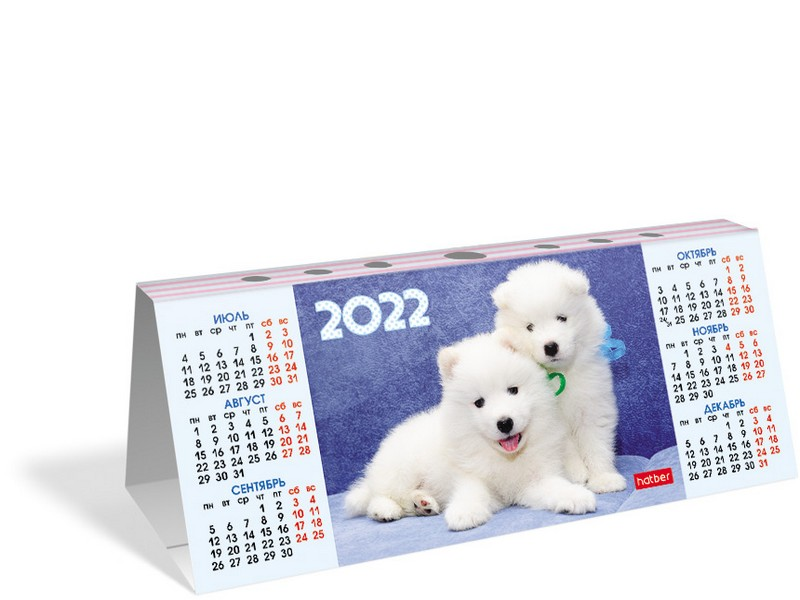 Календарь настольный 2022 (домик) КД6 Ассорти 5вид