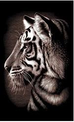 Гравюра малая Тигр медная Reeves (Oasis)
