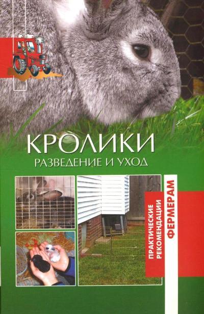 Кролики: Разведение и уход