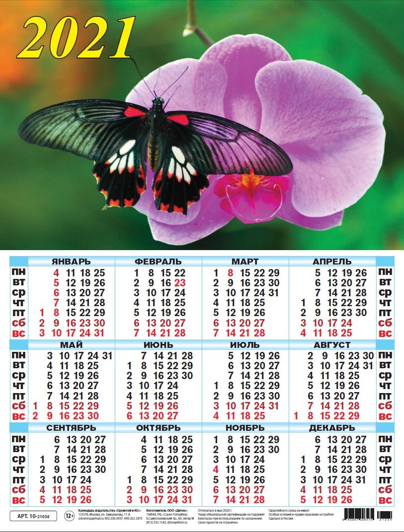 Календарь листовой 2021 10-21034 Бабочка на орхидее
