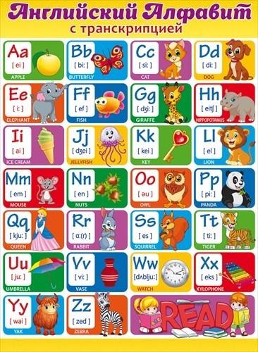 Плакат Английский Алфавит с транскрипцией А2 вертик дети