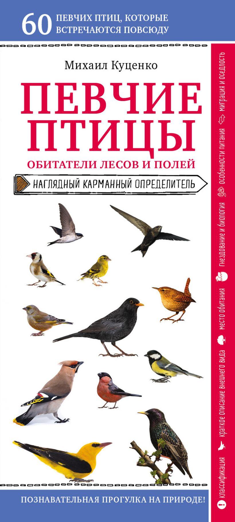 Певчие птицы. Обитатели лесов и полей