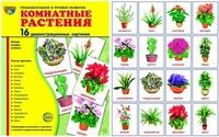 Комнатные растения: 16 демонстрационных картинок с текстом на обороте