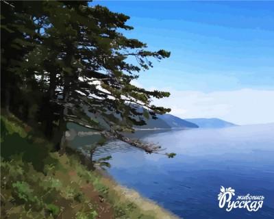 Творч Рисование по номерам 40Х50 Байкал Листвянка