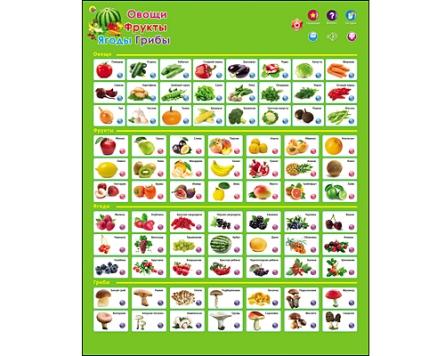 Звуковой плакат Фрукты, овощи, ягоды, грибы на батар.