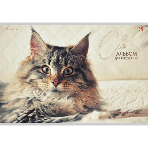 Альбом д/рис 40л Пушистый Кот Cat