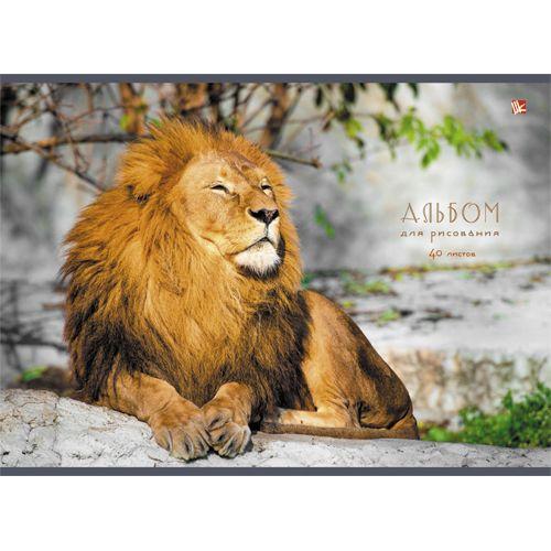 Альбом д/рис 40л Царственный Лев (склейка)