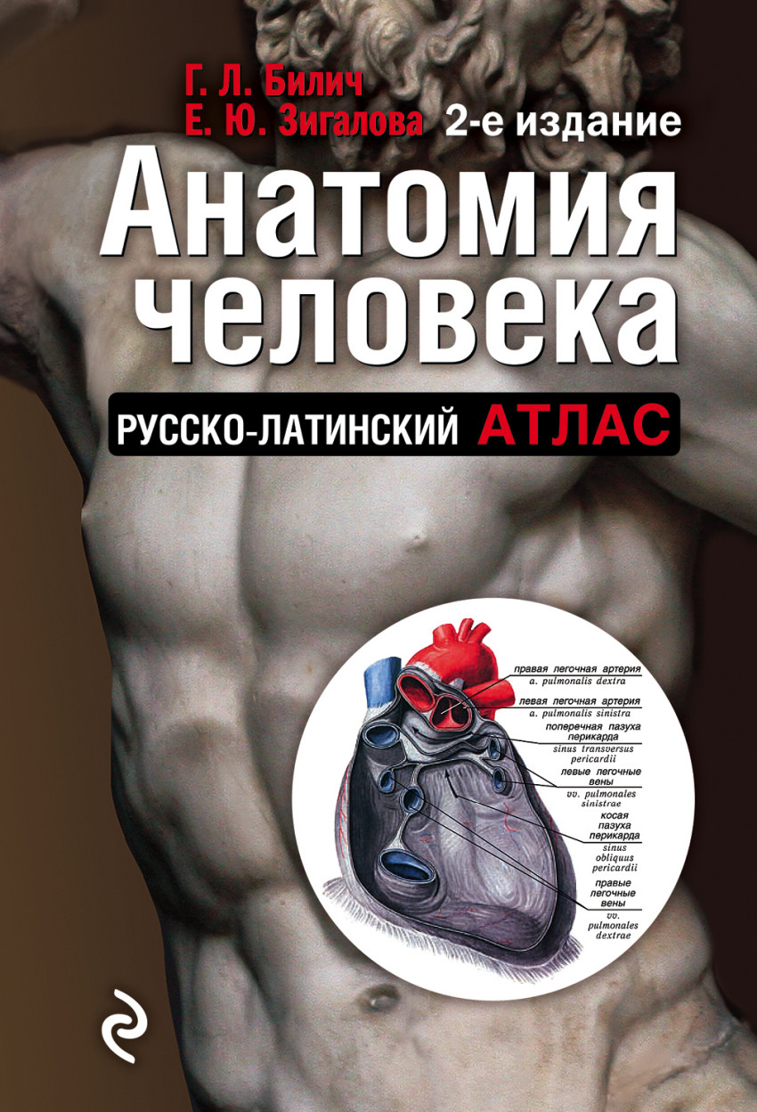 такой книги по анатомии особенности